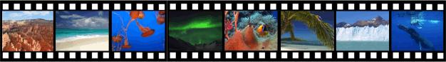 Streaming licentie natuurfilms professioneel gebruik 1 jaar
